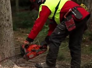 Video: Forest Industry Safety Accord (FISA)