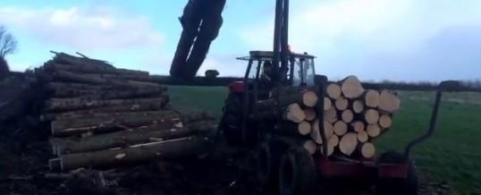 Video: Forwarder Assessessment